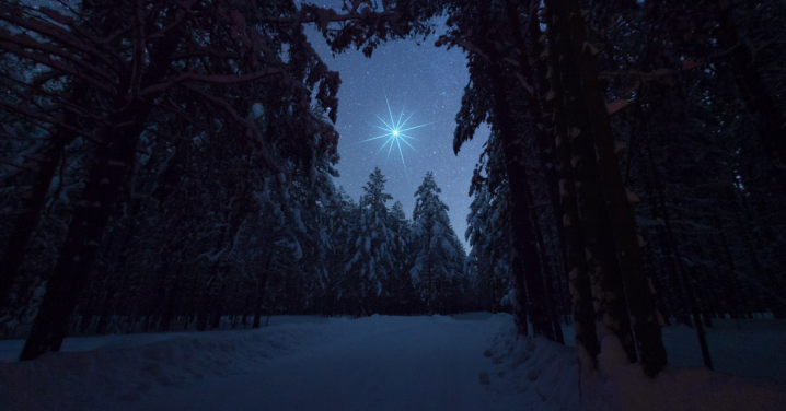 Silent Night (Advent: Day8)